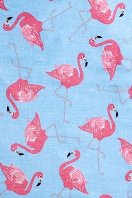 Flamingi różowy