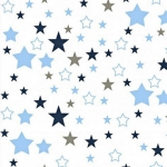 Gwiazdozbiór