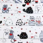 Czarno białe koty
