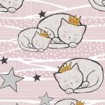 Kotki w koronach