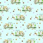 Sowy małe mięta