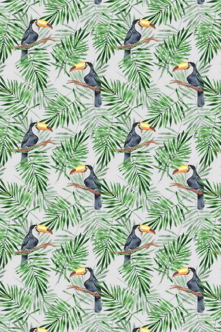 Tukany z palmą